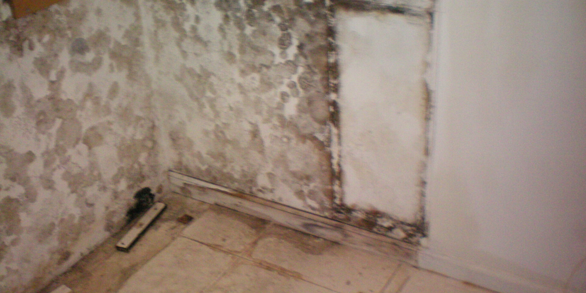 Exposing the damaged area (5)